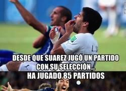 Enlace a BRUTAL: Empieza una nueva etapa para Suárez