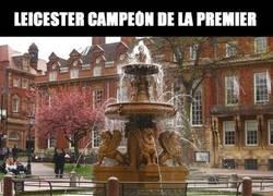 Enlace a Vámonos a Cibe... a Nep... ¿Dónde celebra los títulos el Leicester?