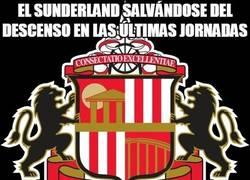 Enlace a El Sunderland salvándose del descenso en las últimas jornadas