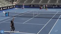 Enlace a GIF: ¿Otra prueba de la gran puntería de Serena Williams? Pues ésta mismo