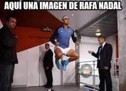 Enlace a Aquí una imagen de Rafa Nadal aterrizando