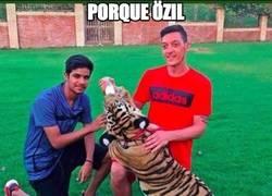 Enlace a Porque Özil jamás dejará de asistir