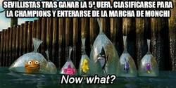 Enlace a Sevillistas tras ganar la 5º UEFA, clasificarse para la champions y enterarse de la marcha de Monch
