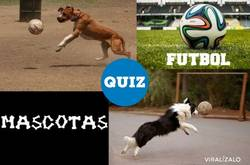 Enlace a QUIZ: ¿Puedes reconocer a estas mascotas de los mundiales y eurocopas fútbol?