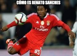 Enlace a Renato Sanches ante Gales