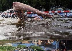 Enlace a Así lucen las aguas de Rio a poco de que empiecen los Juegos Olímpicos