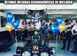 Enlace a Fernando Alonso está preparado para la carrera