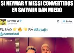Enlace a Meynar o Neyssi, la fusión definitiva