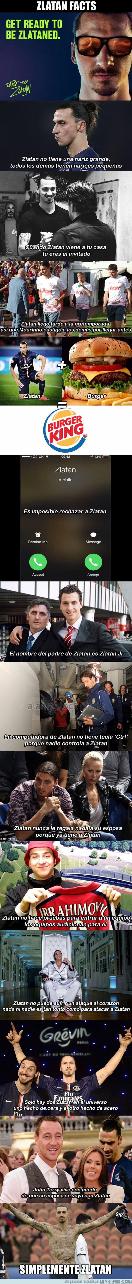 910452 - Zlatan Facts. Simplemente