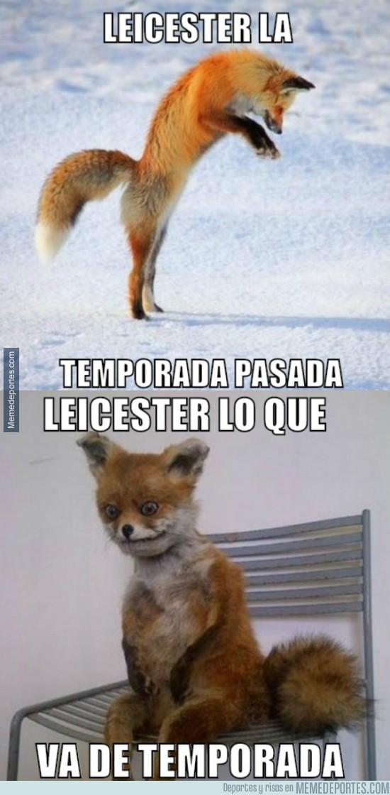 911487 - El Fox de Leicester