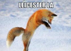 Enlace a El Fox de Leicester