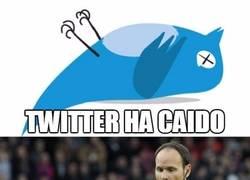 Enlace a La caída de Twitter