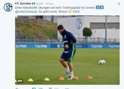 Enlace a Admítelo, el CM del Schalke 04 es tu nuevo ídolo