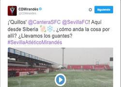 Enlace a Buen rollo entre los CM del Mirandes y el Sevilla Atlético