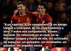 Enlace a La emotiva carta de Luis Suárez a su amigo Steven Gerrard
