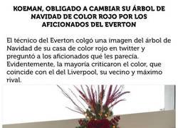 Enlace a Los fans del Everton le hacen tirar a la basura a Koeman su árbol de Navidad