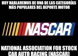 Enlace a NASCAR, más que dar vueltas en círculos