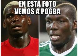 Enlace a Pogboom