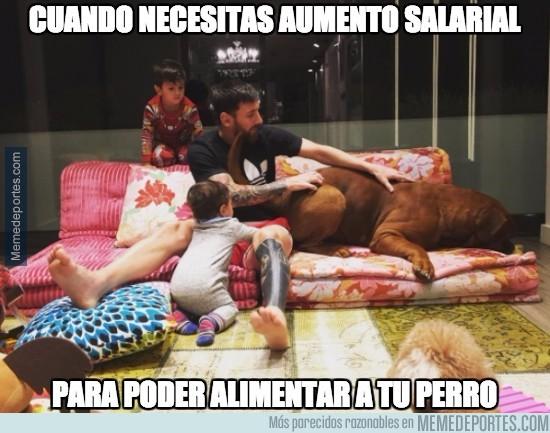 937586 - El perro de Messi es ya tan grande que no cabe ni en el sofá de casa