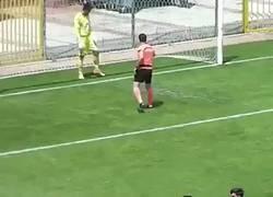 Enlace a Vídeo: Cuando la emoción acaba en un gol en propia puerta