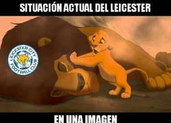 Enlace a Ánimo Leicester... :(