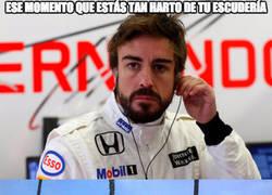 Enlace a Fernando Alonso está hasta el rabo de Honda McLaren y les ha metido este plantón épico