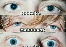 Enlace a No toméis drogas niños