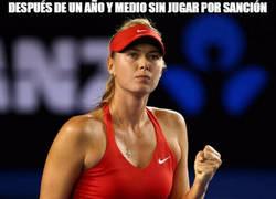 Enlace a Después de un año y medio sin jugar por sanción, vuelve Sharapova