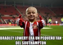 Enlace a El pequeño Bradley Lowery nos ha dejado