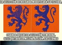 Enlace a La selección de Holanda modificará su escudo para el equipo femenino