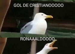 Enlace a La reacción del Bernabéu cada vez que marca Cristiano