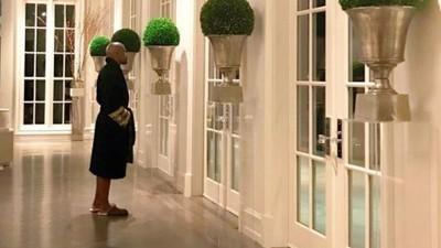 1001311 - La última excentricidad de Mayweather en su casa de Beverly Hills demuestra que se le va la pinza