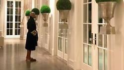 Enlace a La última excentricidad de Mayweather en su casa de Beverly Hills demuestra que se le va la pinza