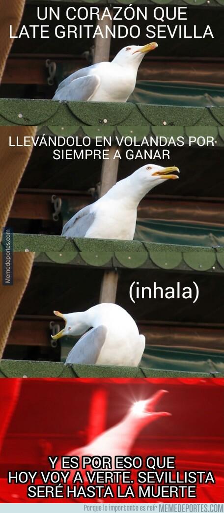 1001892 - El himno del Sevilla versión gaviota