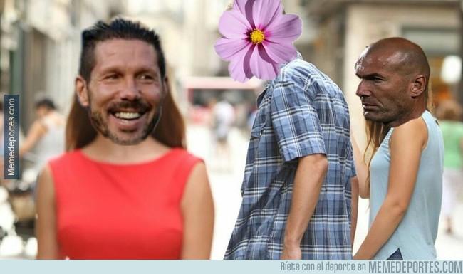 1006633 - La flor del Cholo