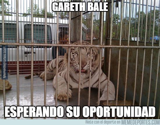 1013226 - Bale esperando para entrar