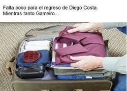 Enlace a Gameiro haciendo las maletas