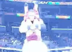Enlace a La WWE en su máxima expresión