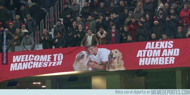 1019573 - En Old Trafford le dan la bienvenida a Alexis... y a sus perros