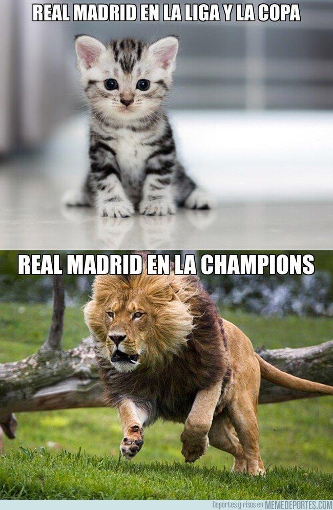 1021567 - Descripción gráfica del Real Madrid esta temporada