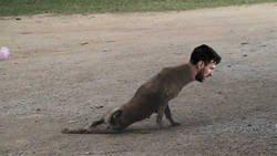Enlace a El partido de Messi en Ipurua