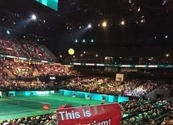 Enlace a Rogerdam. toda Holanda se vuelca a Federer