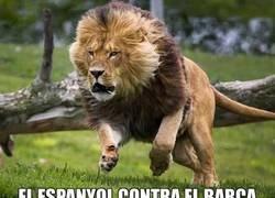 Enlace a El Espanyol en Cornellà