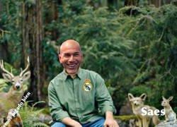 Enlace a Zidane y su zona de confort