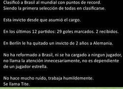 Enlace a Parémonos un momento para hablar del entrenador de Brasil