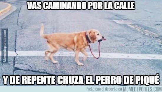 1033391 - El perro de Piqué