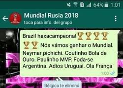 Enlace a Se acabó el Mundial para Brasil
