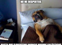Enlace a Dormiré hasta que Florentino anuncie refuerzos