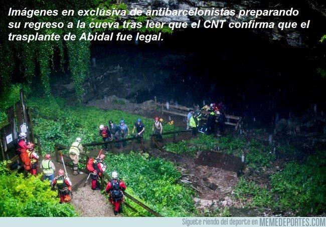 1045540 - El CNT confirma que el trasplante de Abidal fue legal