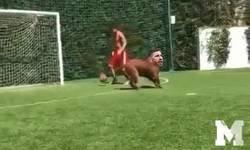Enlace a Cuando Messi se encuentra con Ramos